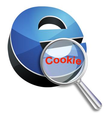 Vigilancia a las cookies por la normativa europea